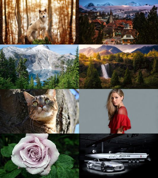Wallpapers Mix №651