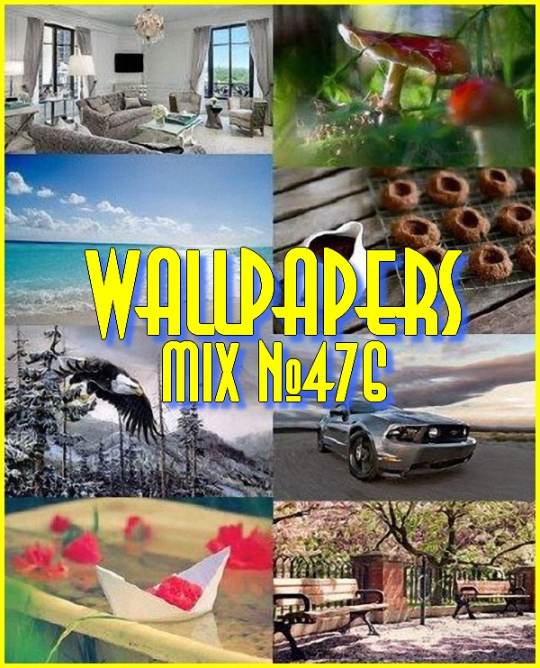 Wallpapers Mix №476